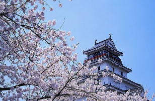Explore all about Japan here